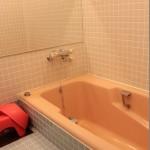 プルミエール 215風呂